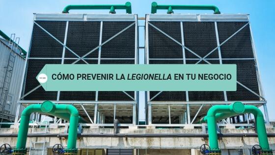 Cómo prevenir la legionella en tu negocio