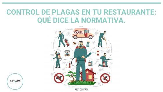 Control de plagas en tu restaurante: Qué dice la normativa